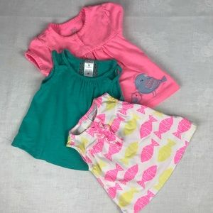 Baby Girls size 9 months 3 Tops bundle/lot